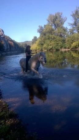cavaliere dans lac