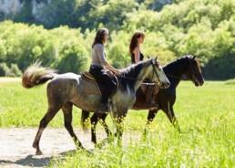 cheval, cavaliere