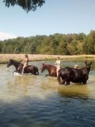 cavalier dans lac